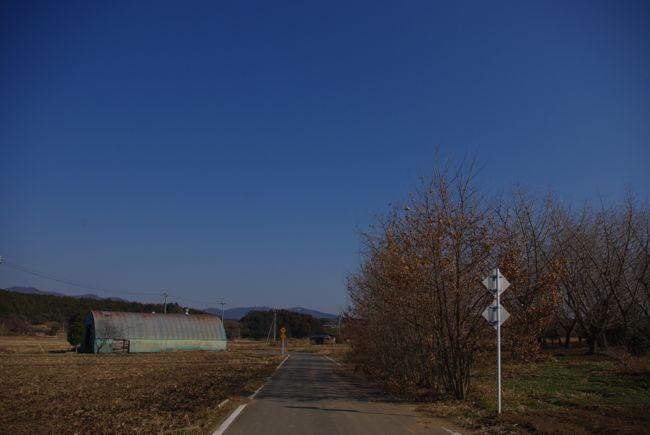 IMGP5307.jpg
