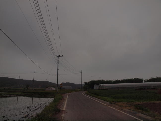 P5118988.jpg