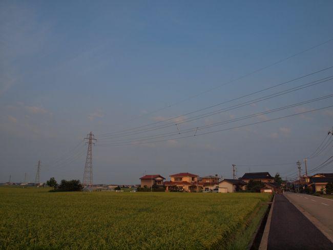 P8090655.jpg