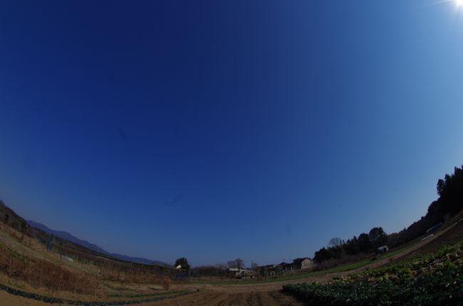 IMGP3409.jpg